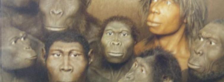Creation vs Evolution: The Basics